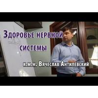Нервная система Вячеслав Антилевский